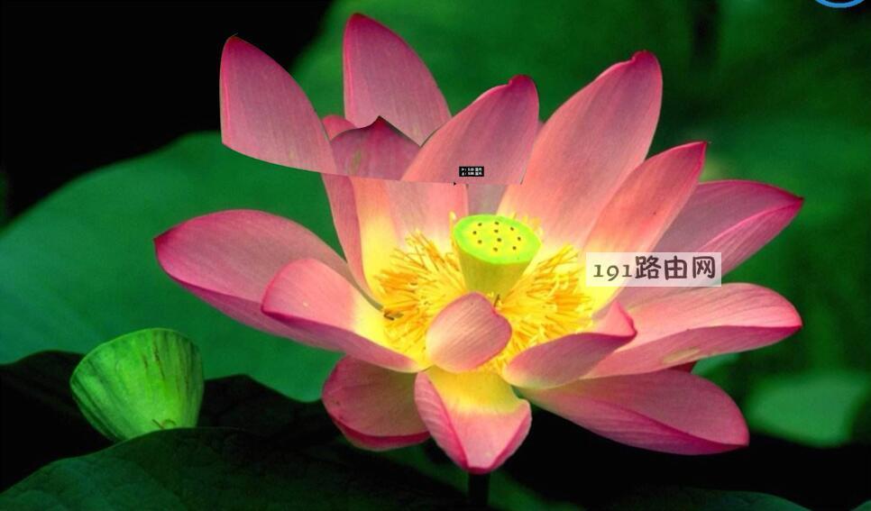 ps教程抠图(5)